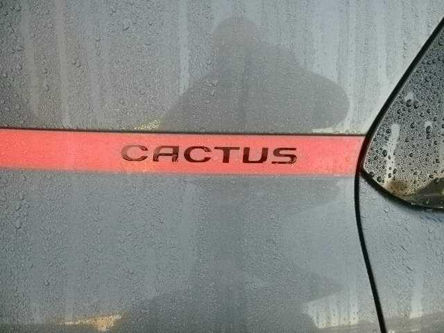 Photos of Citroen C4 Cactus